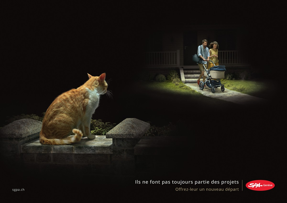 SPA Genève RUPTURE campagne 2016