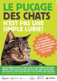 Pucage chats